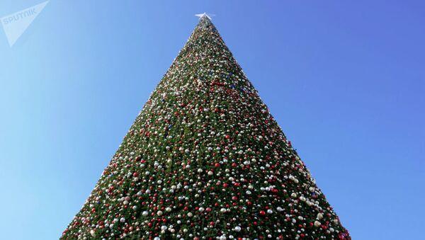 Новогодняя елка в Узбекистане - Sputnik Таджикистан