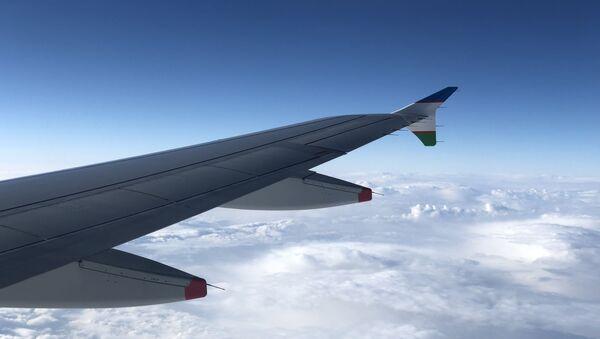 Крыло самолета - Sputnik Таджикистан