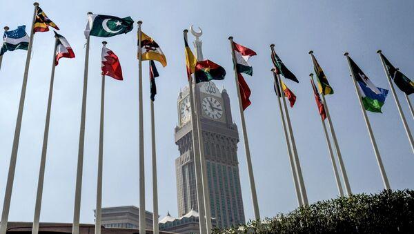 Национальные флаги  государств-членов Организации исламского сотрудничества (ОИС) - Sputnik Тоҷикистон