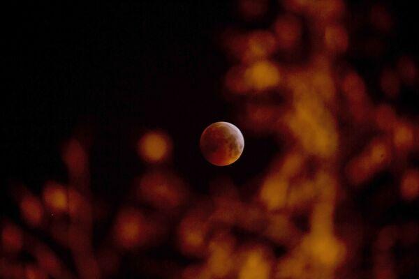 Кровавое лунное затмение в Бельгии  - Sputnik Таджикистан