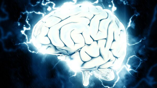 Иллюстрация мозга человека, архивное фото - Sputnik Таджикистан