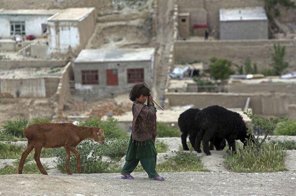 Ребенок-кочевник-афганец Кучи пасет своих овец на вершине холма Надир-Хан в Кабуле, Афганистан - Sputnik Таджикистан
