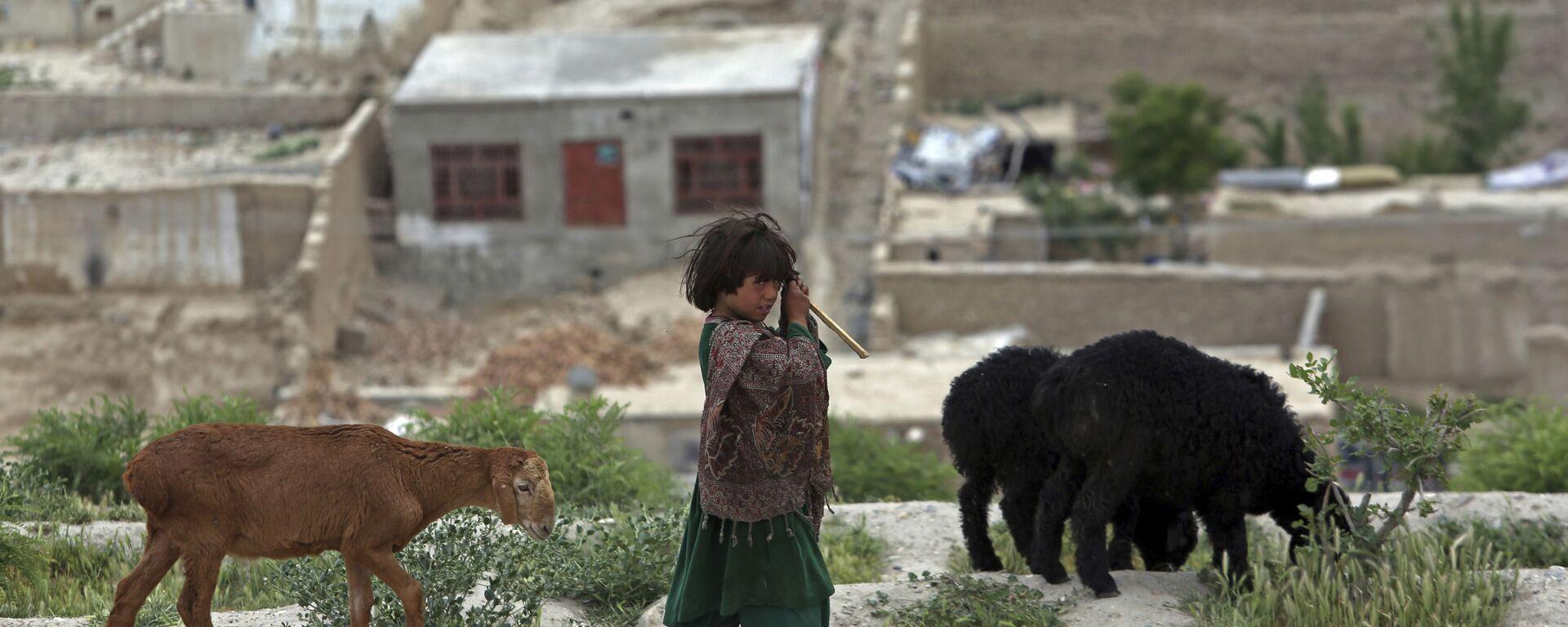 Ребенок-кочевник-афганец Кучи пасет своих овец на вершине холма Надир-Хан в Кабуле, Афганистан - Sputnik Таджикистан, 1920, 25.05.2021
