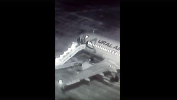 Видео падения пассажиров с трапа самолета  - Sputnik Таджикистан