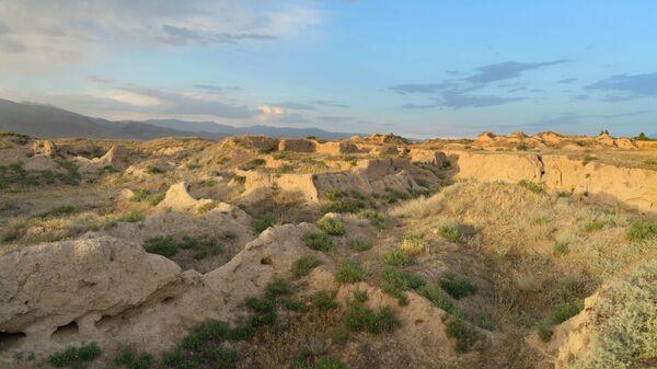 Раскопки древнего городища Пенджакент в Таджикистане - Sputnik Тоҷикистон