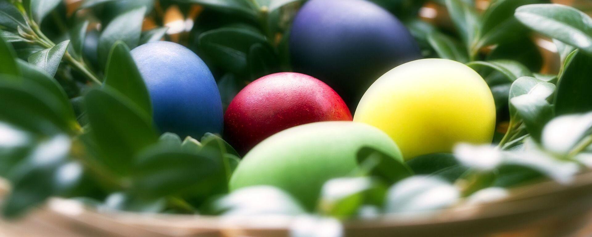 Крашеные яйца на Пасху - Sputnik Таджикистан, 1920, 21.03.2019