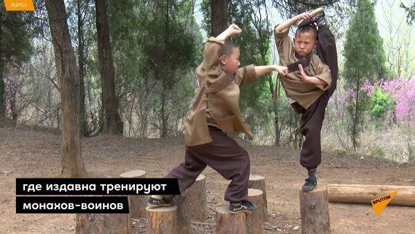 Закалка с детства: малышей от 6 лет тренируют кунг-фу в китайском Шаолине - Sputnik Таджикистан