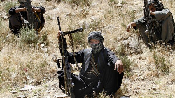 Члены террористического движения Талибан в Афганистане - Sputnik Таджикистан