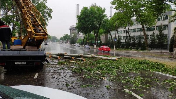 Ураган в Ташкенте - Sputnik Таджикистан