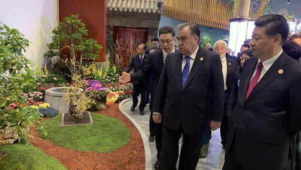Президент Республики Таджикистан Эмомали Рахмон посетил Международную выставку садоводства в Пекине ЭКСПО-2019 - Sputnik Тоҷикистон