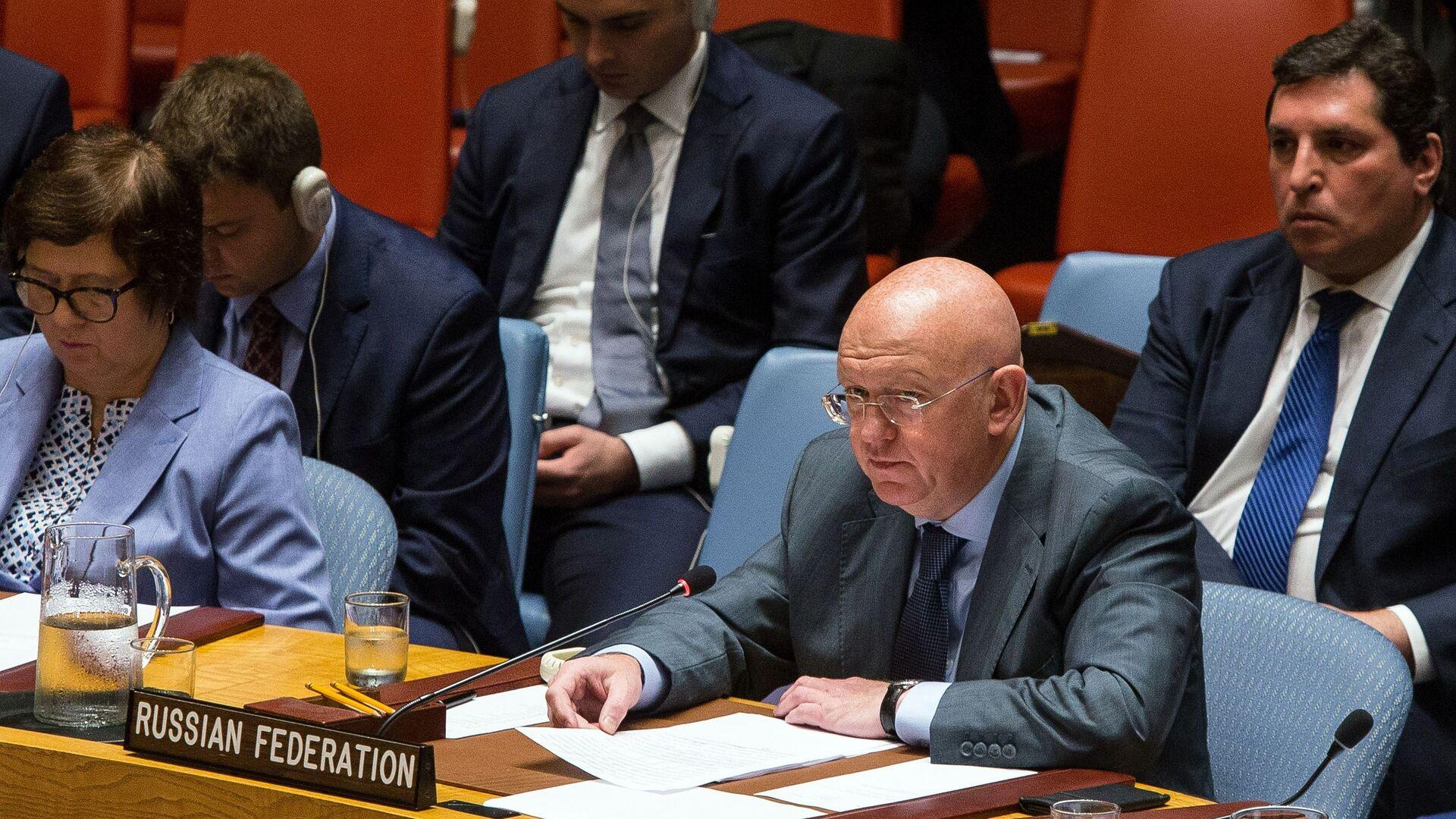 Заседание Совета безопасности ООН по Сирии - Sputnik Тоҷикистон, 1920, 17.08.2021