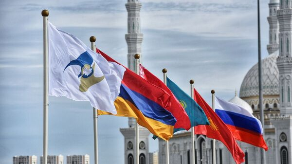 Президент РФ В. Путин принимает участие в заседании Высшего Евразийского экономического совета - Sputnik Таджикистан