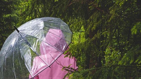 Прогулка в дождливую погоду - Sputnik Тоҷикистон