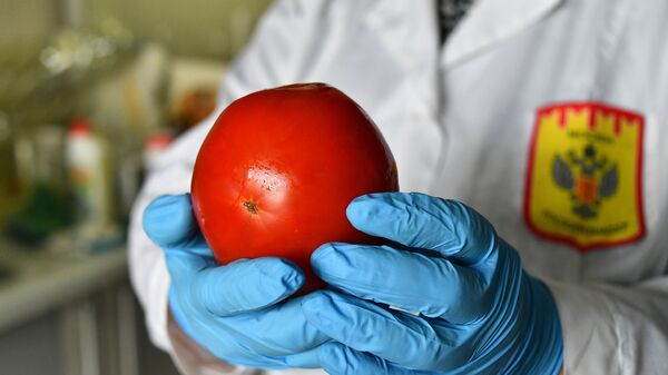 Лабораторные исследования качества и безопасности овощей  - Sputnik Тоҷикистон