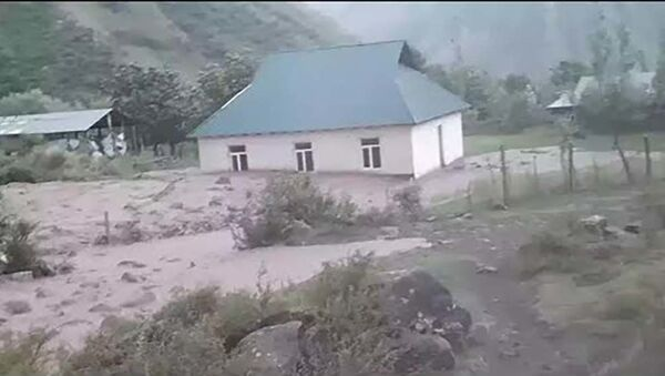 Селевой потоп в Таджикистане в районе Сангвора - Sputnik Таджикистан