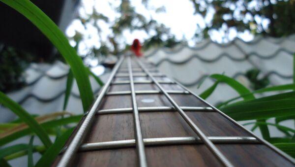 Гриф гитары - Sputnik Таджикистан