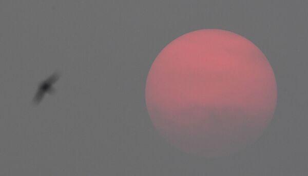 Солнце перед закатом в Новосибирске - Sputnik Таджикистан