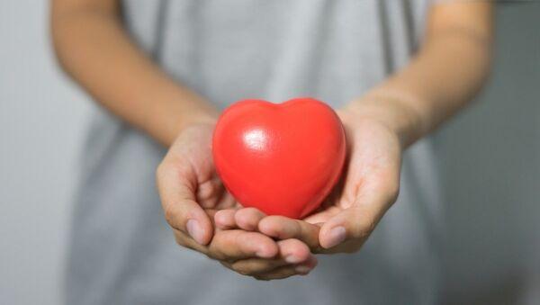 Игрушечное сердце в руках, архивное фото - Sputnik Таджикистан