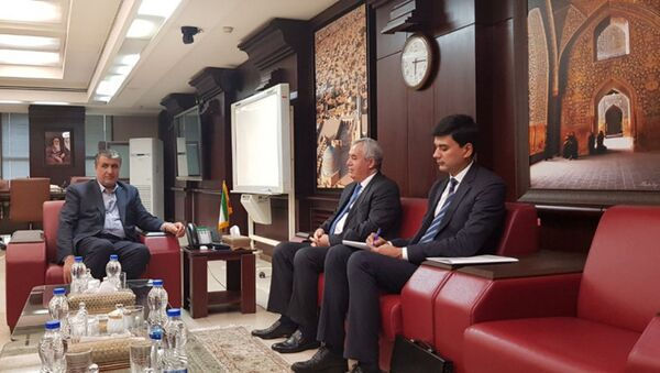 Встреча Посла Таджикистана с Министром транспорта и градостроительства Ирана - Sputnik Тоҷикистон