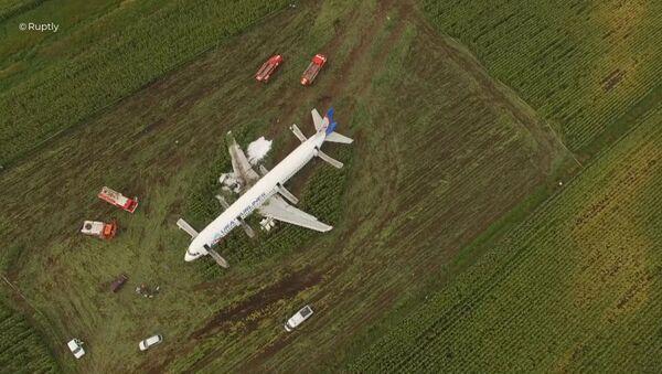 Пассажирский самолет совершил аварийную посадку в Подмосковье - Sputnik Таджикистан