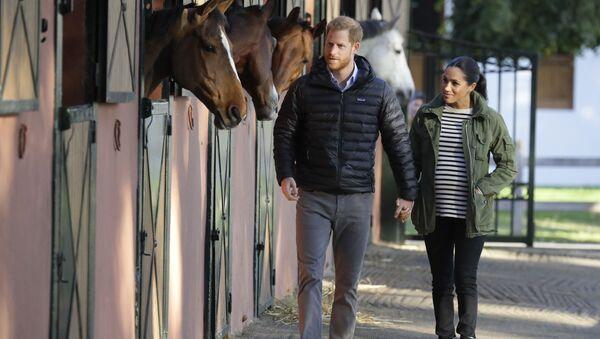 Принц Великобритании Гарри и Меган, герцогиня Сассексская, проходят мимо лошадей - Sputnik Таджикистан
