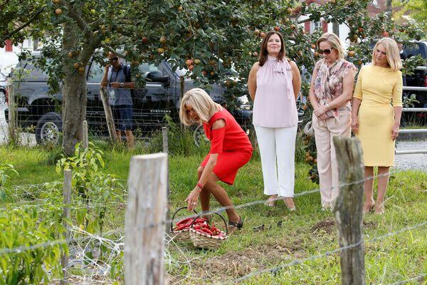 Жена президента Франции Брижит Макрон на поле для выращивания красных перцев в Espelette - Sputnik Таджикистан