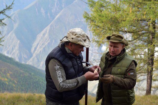 Президент России Владимир Путин и министр обороны России Сергей Шойгу во время прогулки по тайге - Sputnik Таджикистан