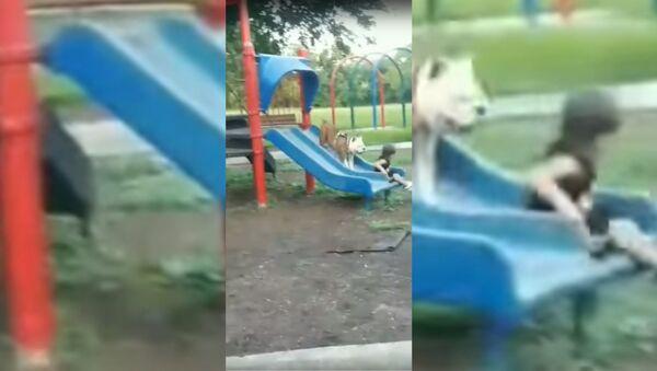 Смешное видео на детской площадке - Sputnik Таджикистан