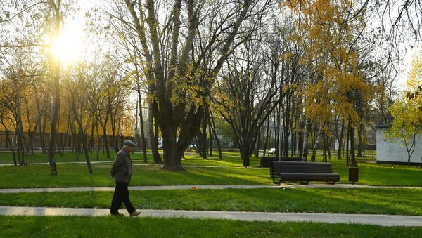 Мужчина идет по скверу в Капотне - Sputnik Таджикистан