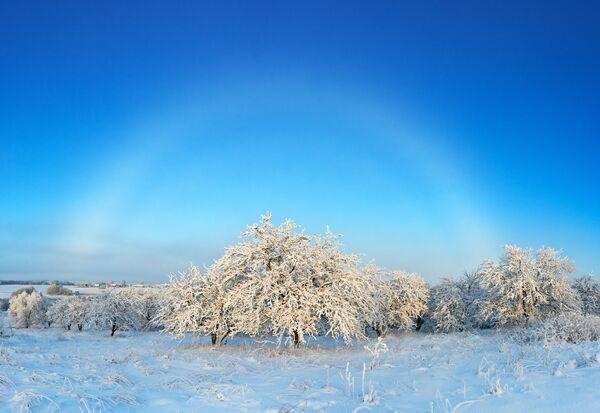Снимок White misty rainbow over the winter garden фотографа Елены Беловозовой, ставший финалистом конкурса Weather Photographer of the Year 2019 - Sputnik Таджикистан