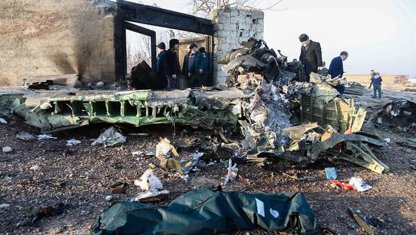 На месте крушения саомлета в Иране  - Sputnik Таджикистан
