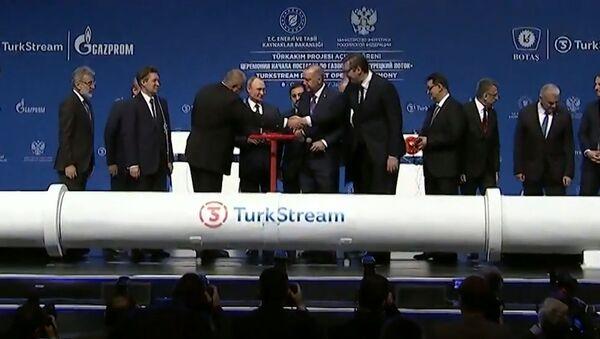 Турецкий поток запущен: что будет с ценами на газ? - Sputnik Таджикистан