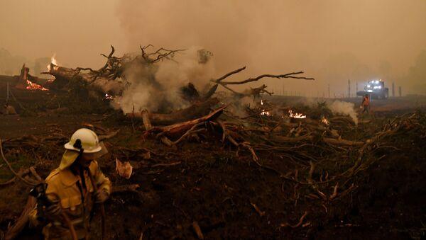 Тушение лесных пожаров в Австралии - Sputnik Таджикистан