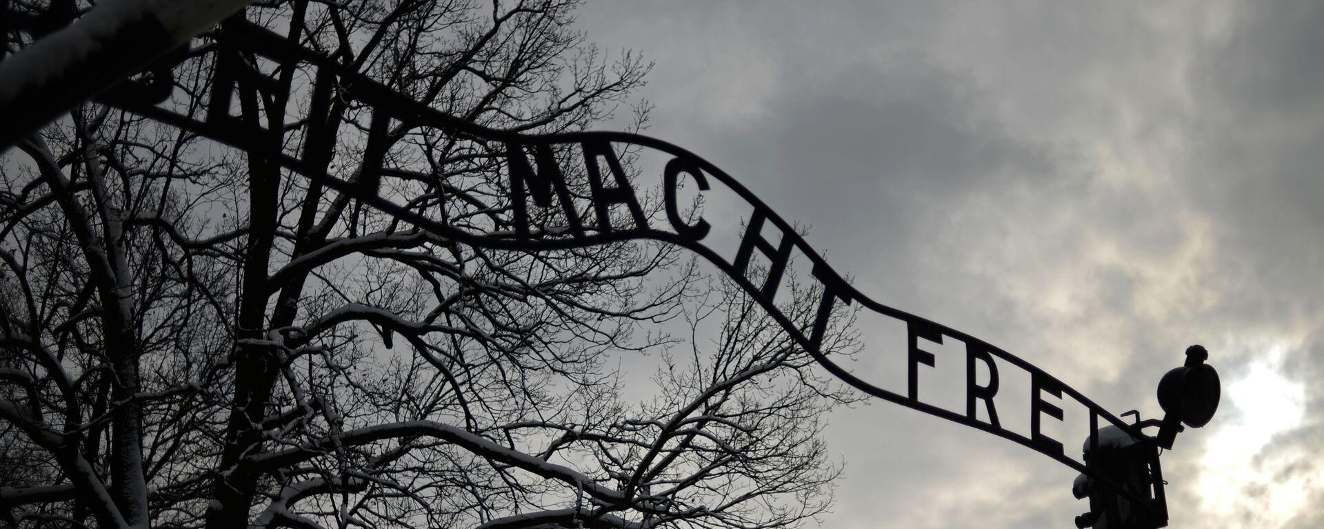 Центральные ворота бывшего концентрационного лагеря Аушвиц-Биркенау в Освенциме - Sputnik Таджикистан, 1920, 20.01.2020