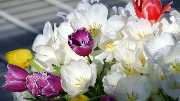 Цветы к празднику 8 Марта - Sputnik Таджикистан