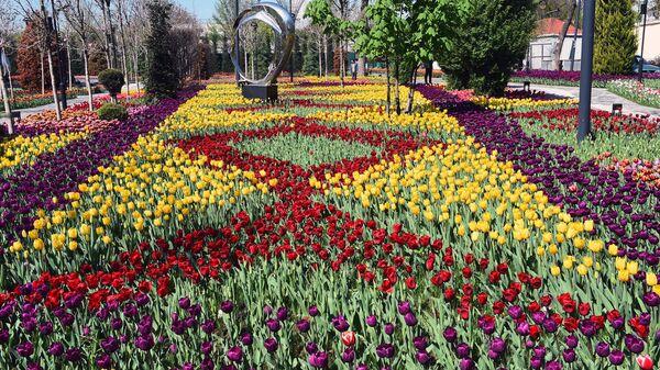 Сад имени Ахмади Дониша  - Sputnik Таджикистан