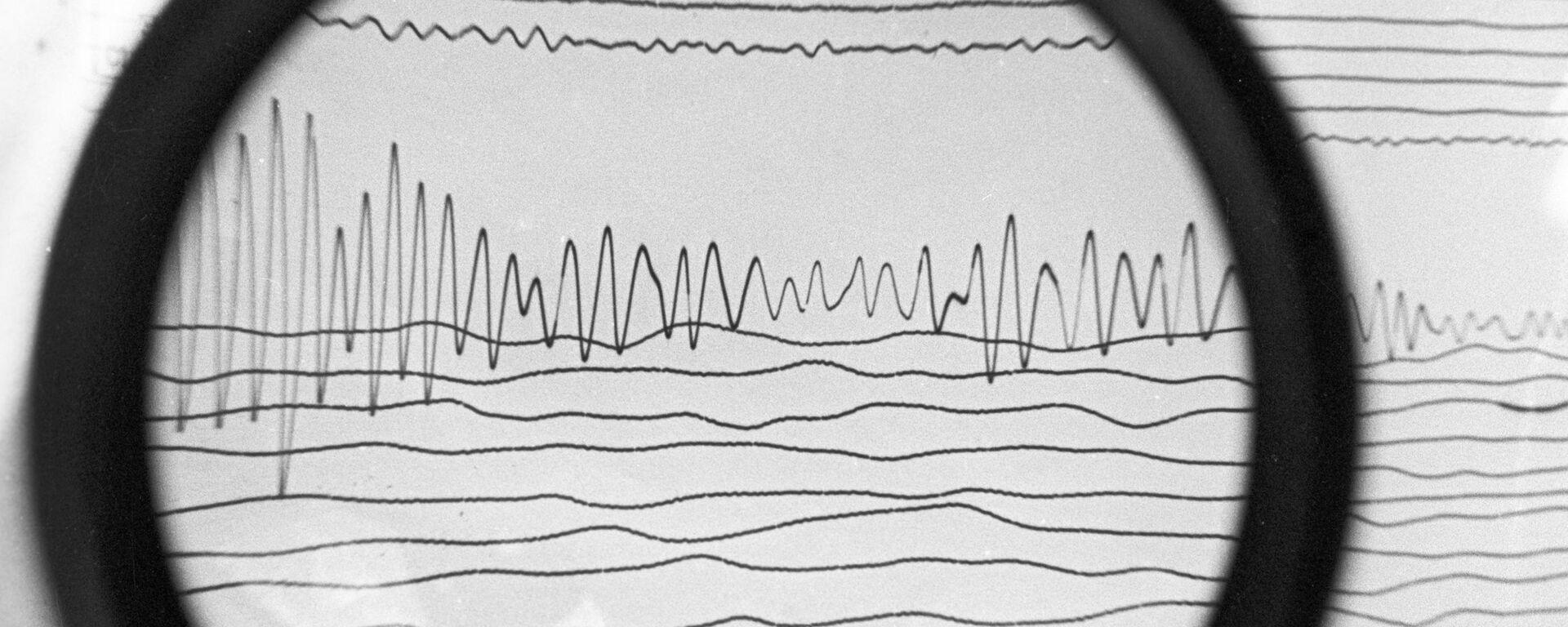 Сейсмограмма землетрясения, архивное фото - Sputnik Тоҷикистон, 1920, 03.10.2021