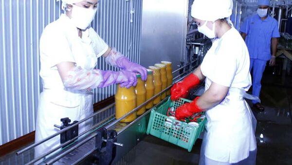 На предприятии по переработке фруктов и консервирования - Sputnik Таджикистан