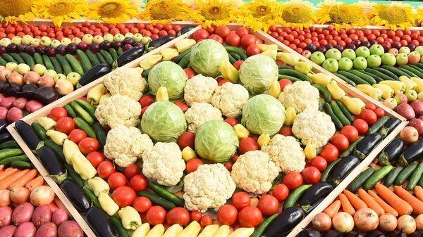 Овощи на сельскохозяйственной выставке в Худжанде - Sputnik Тоҷикистон