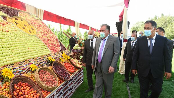 Визит президента Таджикистана Эмомали Рахмона в Джаббар-Расуловский район - Sputnik Таджикистан